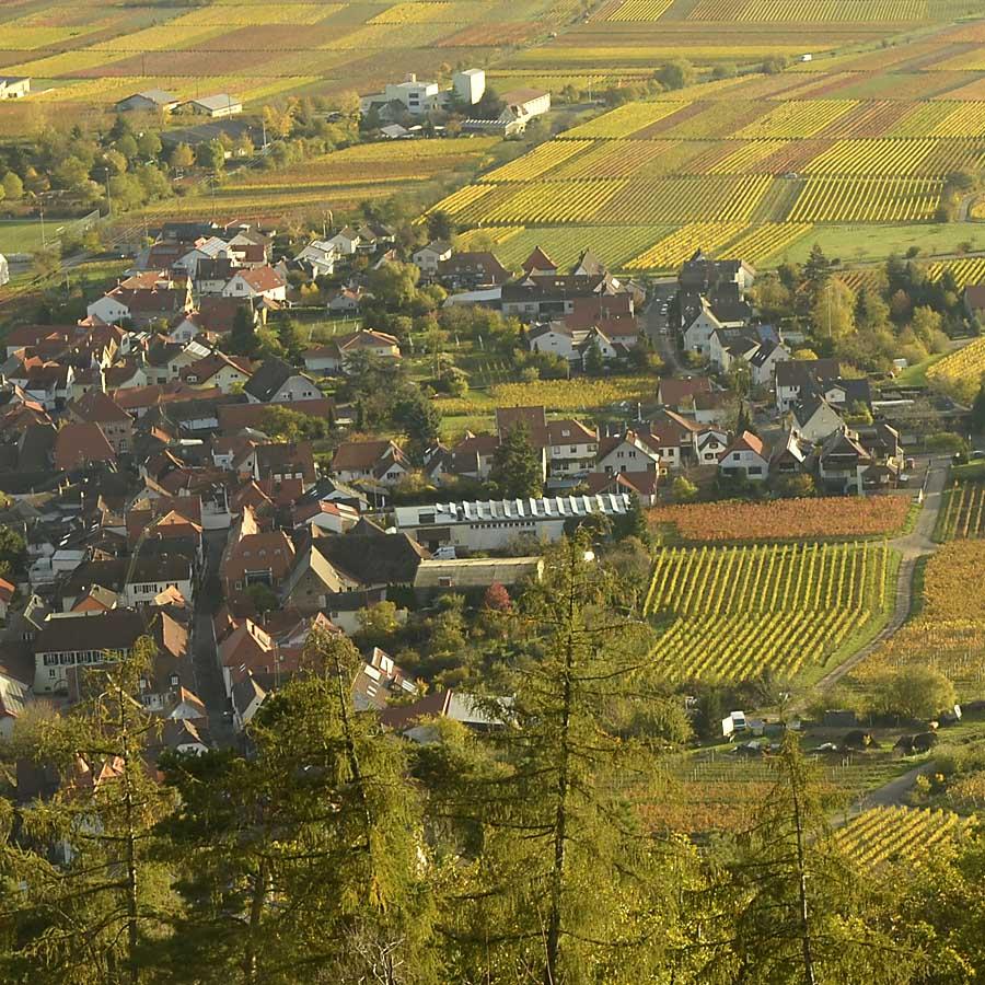 Blick auf den südlichen Teil von Hambach